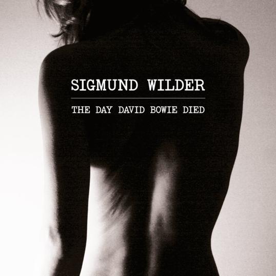 Sigmund Wilder _ David Bowie_538x538