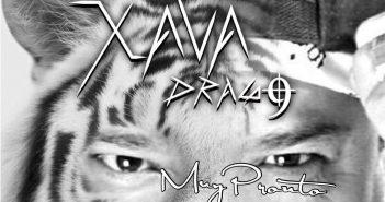 xava-drago-gato-madre