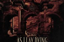 asilaydying-shaped
