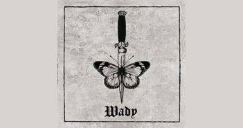 wady1
