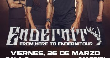 Endernity